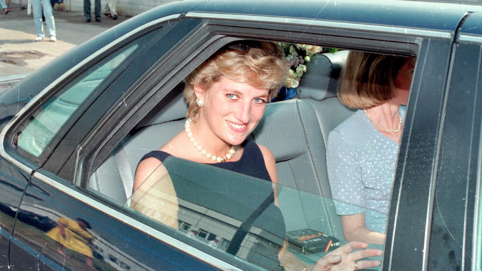 Принцесса Диана, 1995 г.